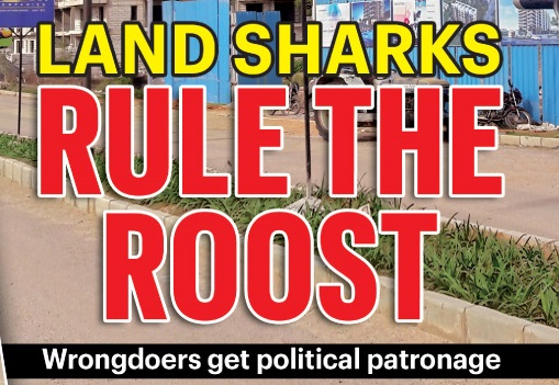 LAND SHARKS.. RULE THE ROOST