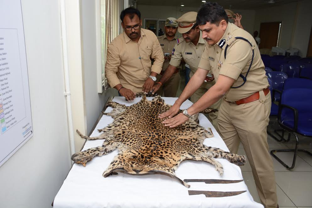 17 held for killing leopard